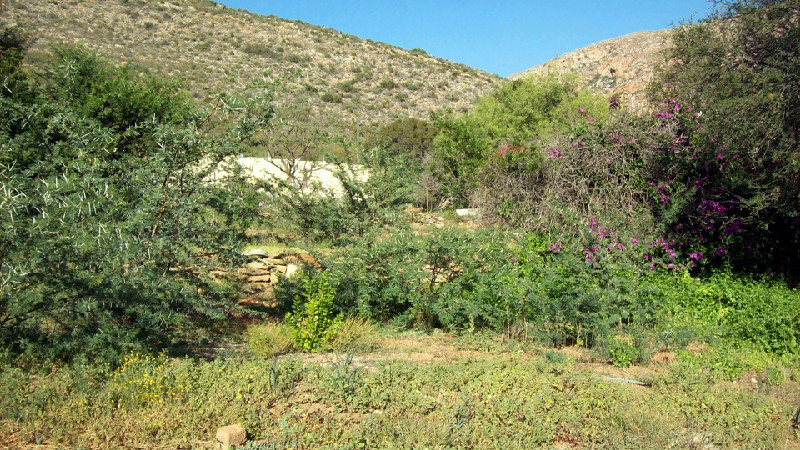 Plots Property in Montagu